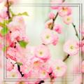 Зарисовка о весне...
