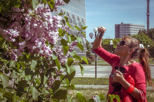 Фотосессия цветения сирени