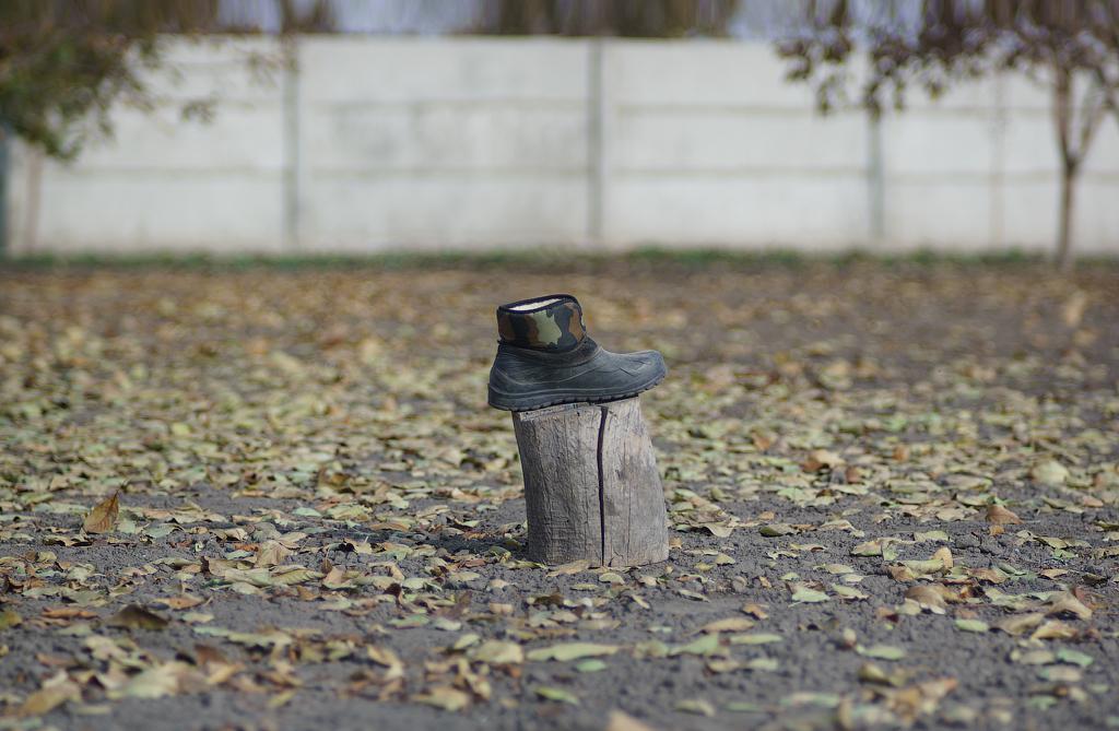 Метод Варганчика