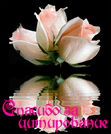 http://img-fotki.yandex.ru/get/9761/97761520.118/0_8188e_234c04ad_orig.png