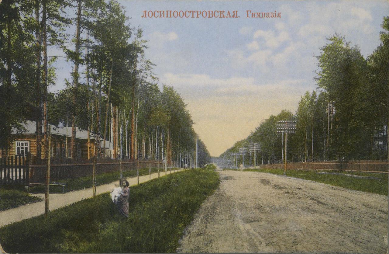 Окрестности Москвы. Лосиноостровская. Гимназия