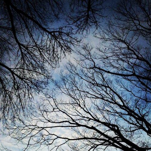 Небо над Тильбургом