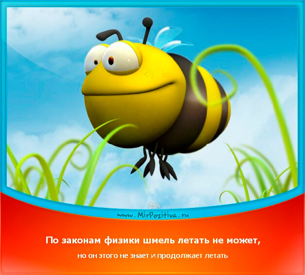 позитивчик дня: По законам физики шмель летать не может, но он этого не знает и продолжает летать