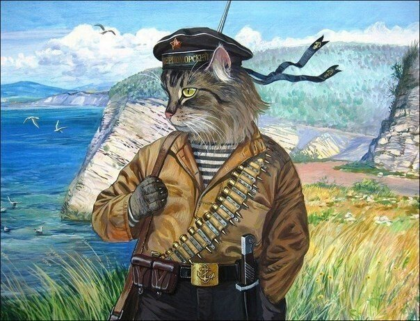 Военные коты Александра Завалий, художник из Геленджика