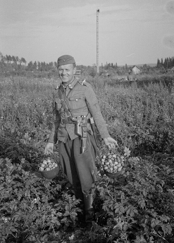 Vallatulta alueelta on löytynyt perunamaa.