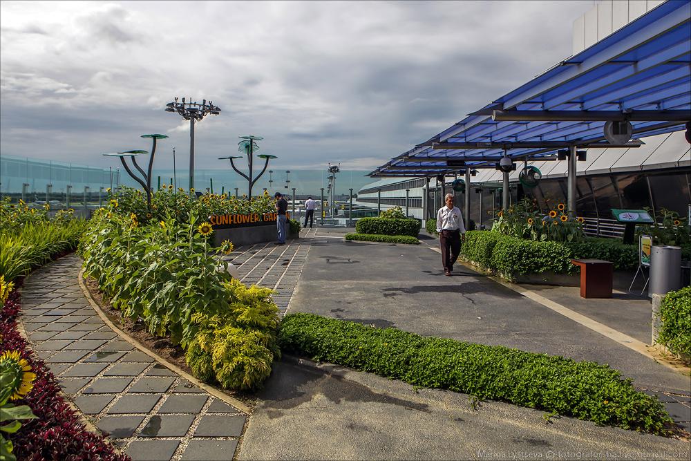 Аэропорт Сингапура