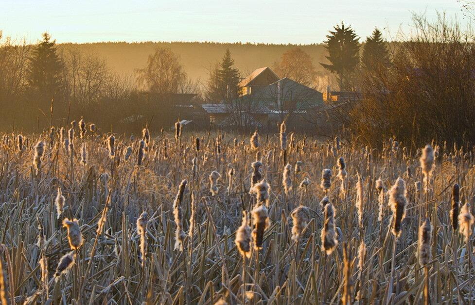 Домик в деревне. Съемка пейзажа на Nikon D5100 и телеобъектив Nikon 70-300mm f/4.5-5.6G.