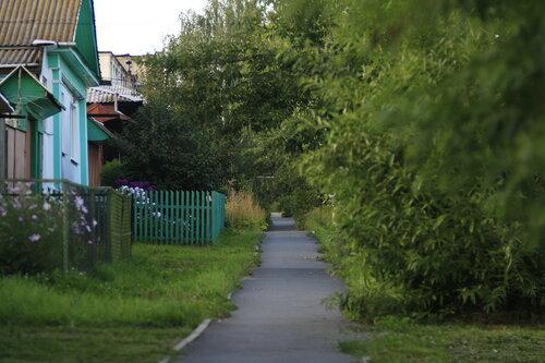 Тротуар в зелени, Куса