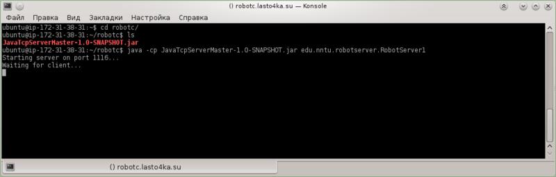 konsole_ssh2_robotserver_start.png