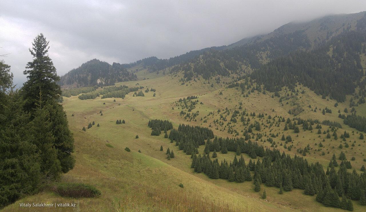 Панорама Кок-Жайляу с западной стороны.