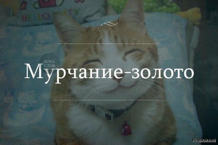 0_d3e05_869c4bbf_orig.jpg