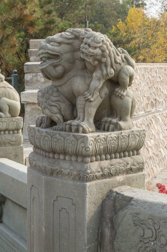 Львица со львятами