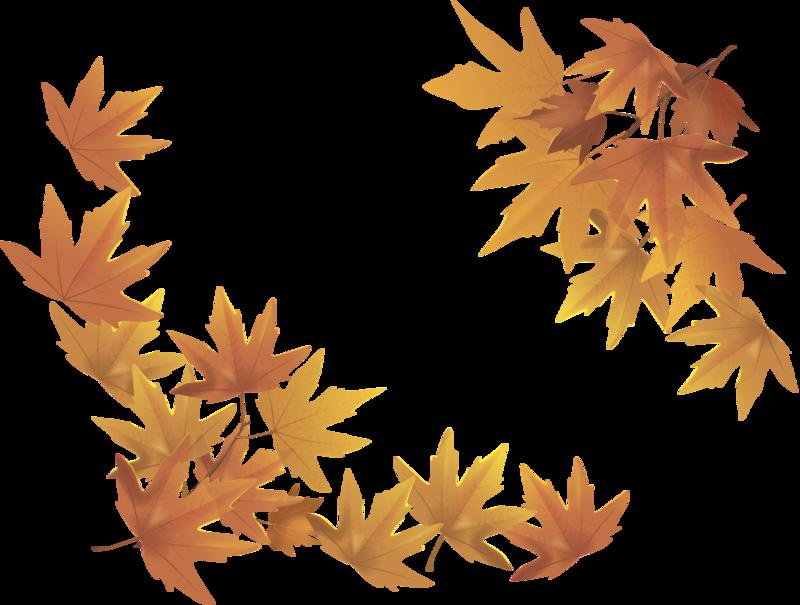 пластиковые картинка для фона осень на прозрачном фоне котят