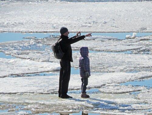 Мы на этой льдине вооон туда поплывем ...