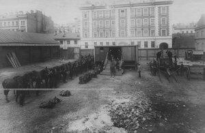 Учебная погрузка орудий, лошадей и снаряжения в железнодорожные вагоны.