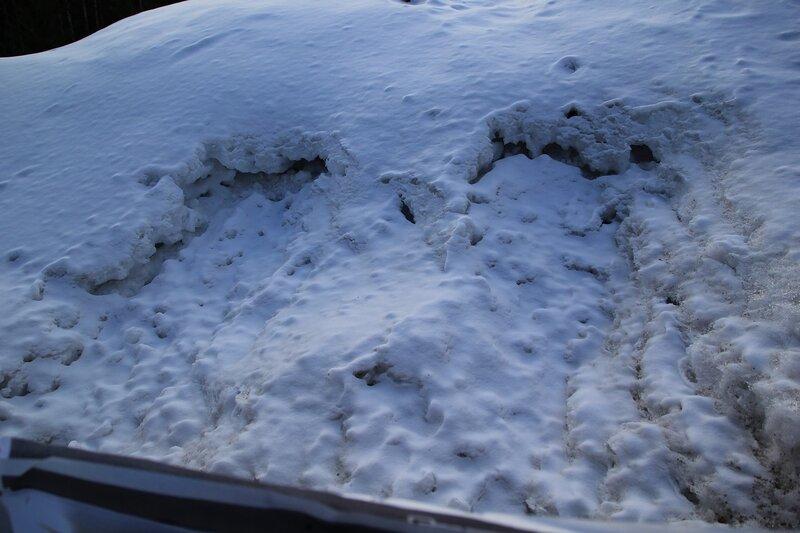 изрытый пулями снег за мишенями