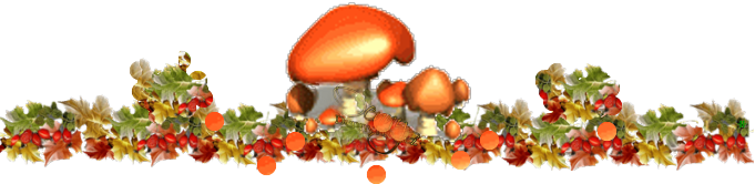 http://img-fotki.yandex.ru/get/9764/65387414.5e2/0_107410_53abbcaa_XL.png