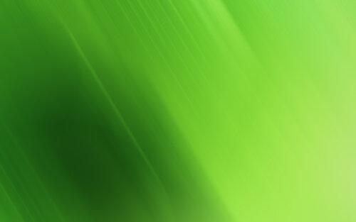 http://img-fotki.yandex.ru/get/9764/97761520.1fb/0_849bb_2ae74745_L.jpg