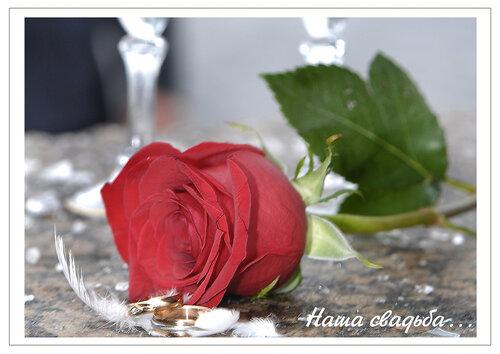 http://img-fotki.yandex.ru/get/9764/97761520.254/0_85bd9_36d340ee_L.jpg