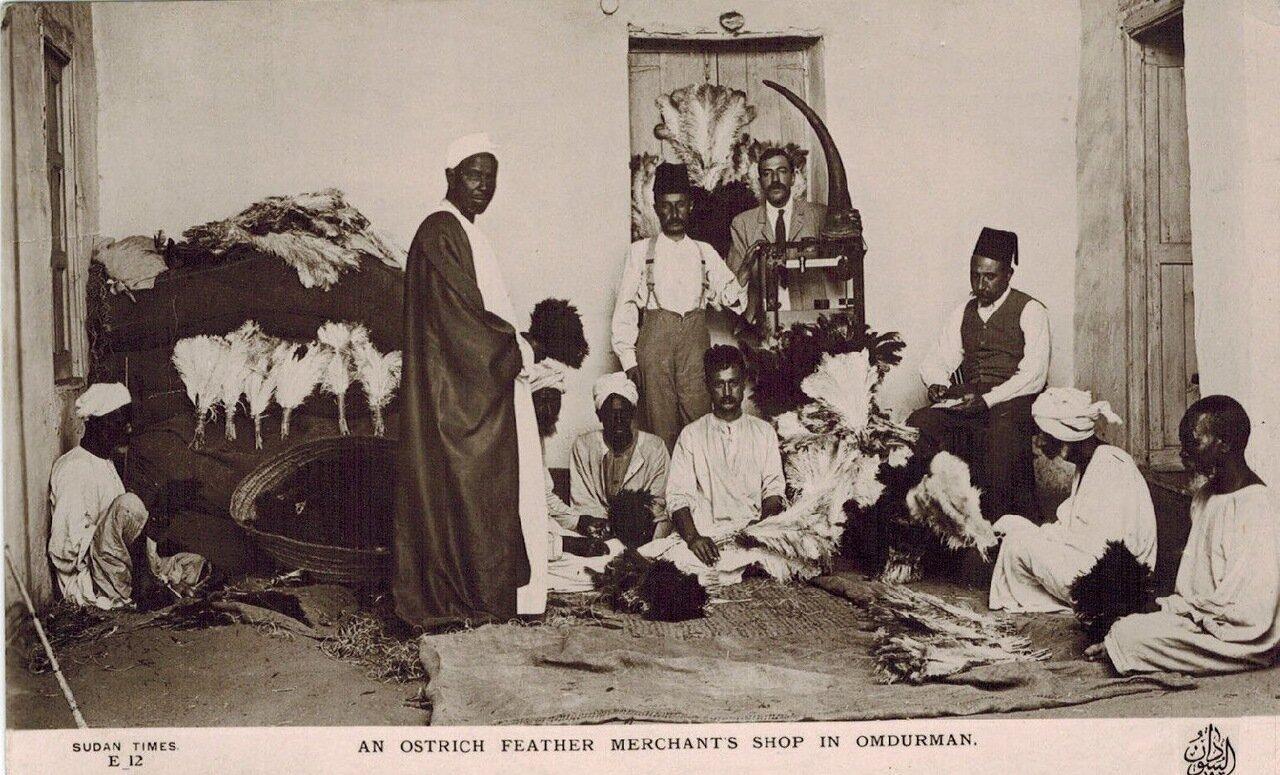 1910. Лавка страусиных перьев в Омдурмане. Судан