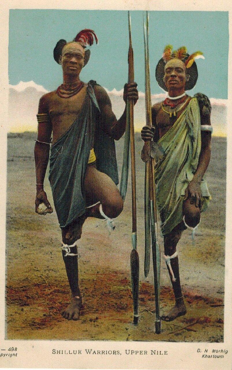 1910. Воины шиллуков, Верхний Нил, Судан,