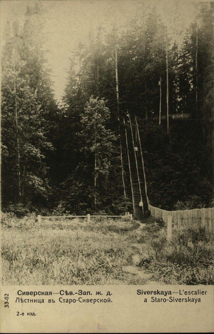 Лестница в Старо-Сиверской