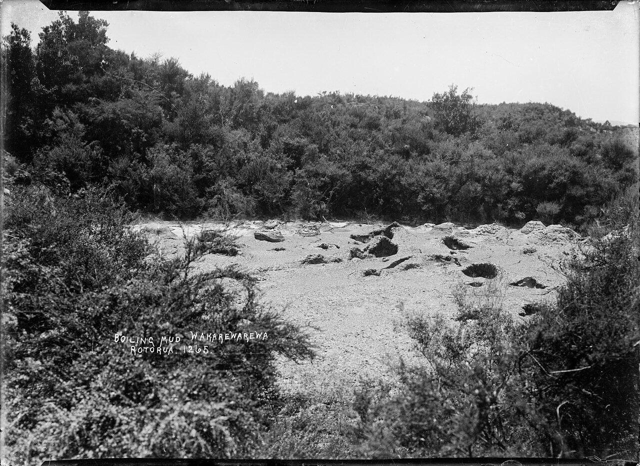 Кипящая грязь в долине Вакареварева