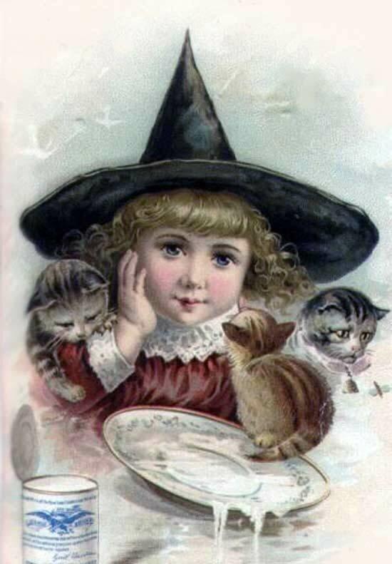 Старинные открытки с котиками, животные спортсмены