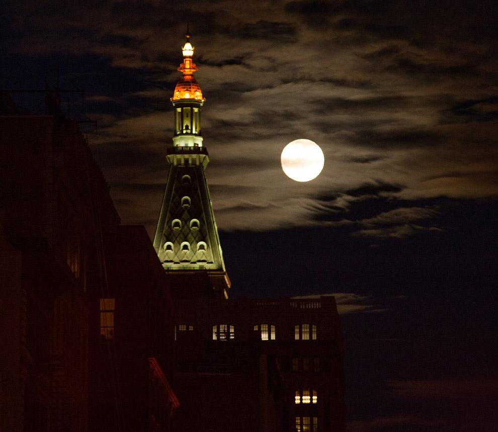 12. Луна и самолет в Германии, 25 июля 2016. (Фото Frank Rumpenhorst):