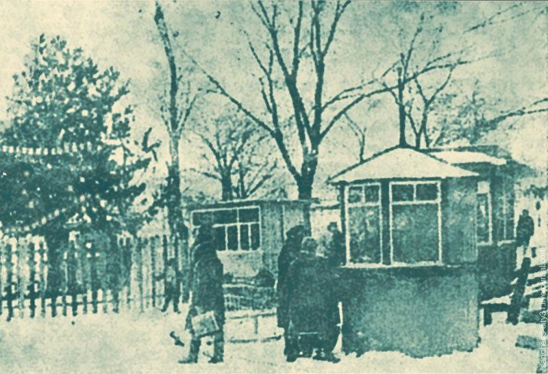 Главная ёлка в Белгороде, 1940. С фото Нижегородцева, БП