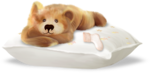 NLD Hello Baby Pillow with bear sh.png