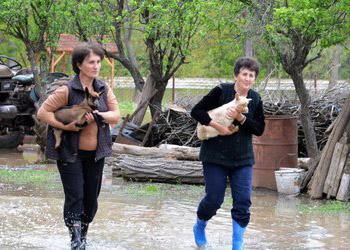 Число жертв наводнения в Сербии увеличилось до 51