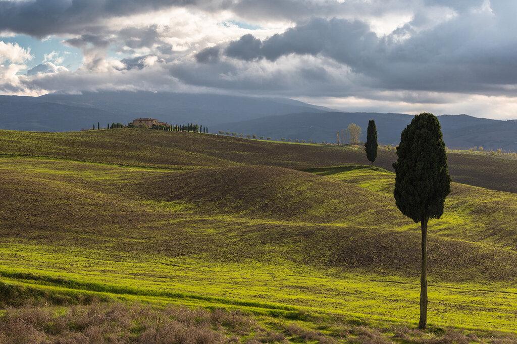 tuscany-9905.jpg