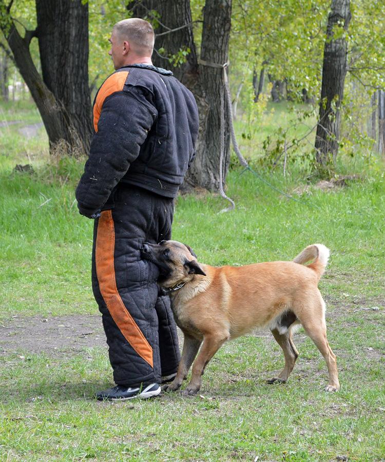 http://img-fotki.yandex.ru/get/9766/199897576.4c/0_ebe62_6bebd3c_orig.jpg