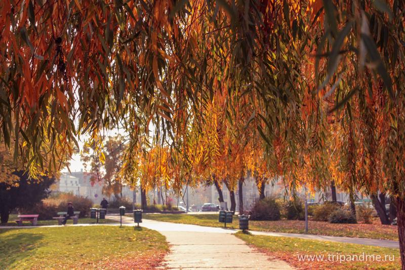 Осенний Будапешт 19.jpg