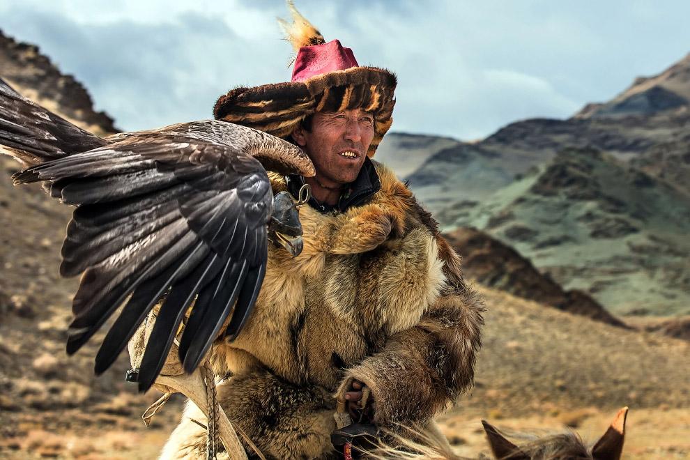 9. Беркут — одна из наиболее известных хищных птиц семейства ястребиных, самый крупный орел. (Фото B