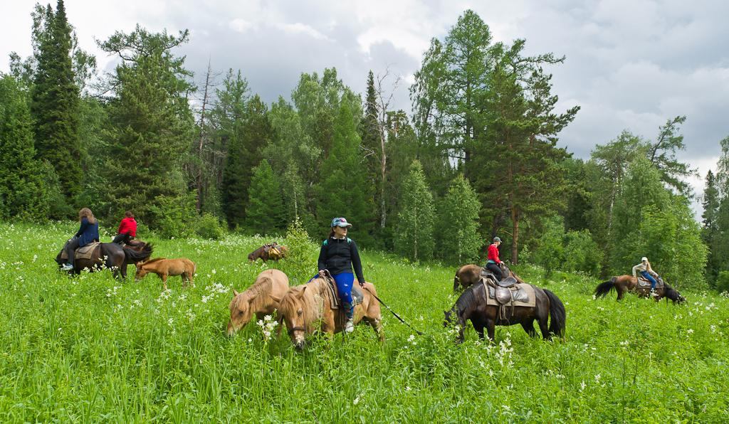2. Конный поход. На горных полянах горы Ялангас в Башкирии