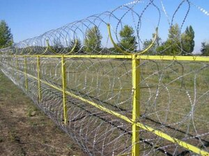 Румыния выступает против забора на границе с Венгрией