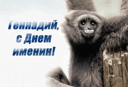 Геннадий, с Днем именин! открытки фото рисунки картинки поздравления