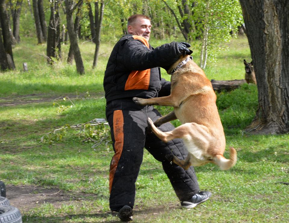 http://img-fotki.yandex.ru/get/9767/199897576.4c/0_ebe68_1de612e4_orig.jpg