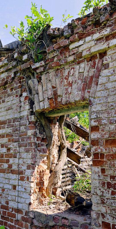 Руина через дорогу  от господского дома