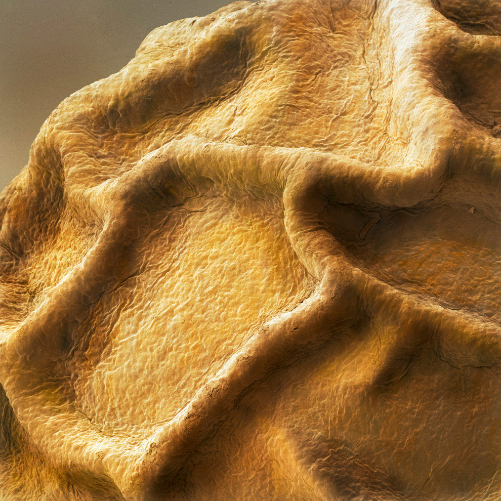 Eda-pod-mikroskopom-19-foto