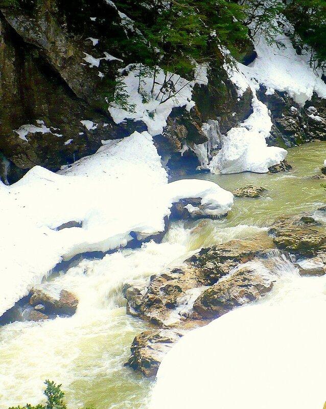 В горах, на Природе, зимний Кавказ (16).jpg