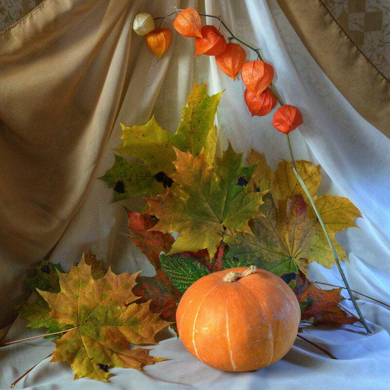 Тёплые цвета осени
