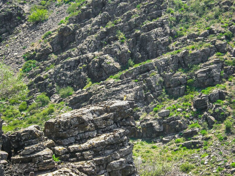 Природа Талдыбулака