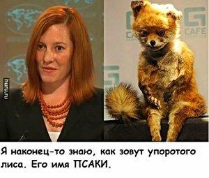 Я знаю как зовут упоротого лиса. Его имя Псаки