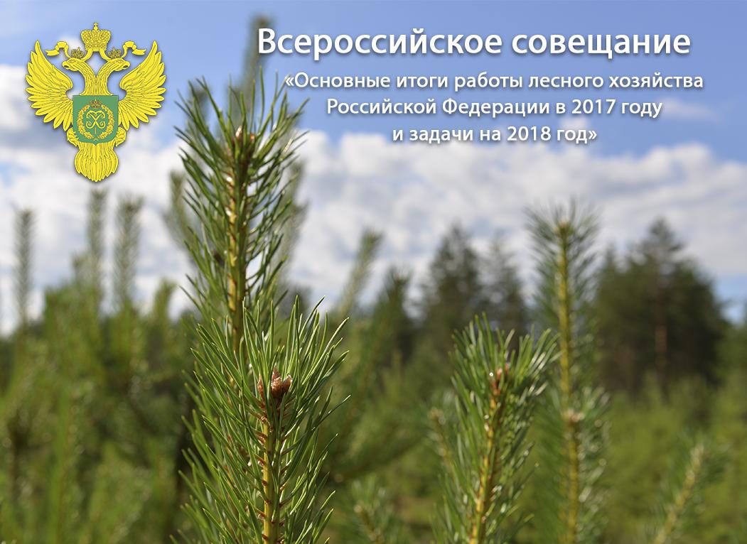 Калужский министр приняла участие во Всероссийском совещании Федерального агентства лесного хозяйства
