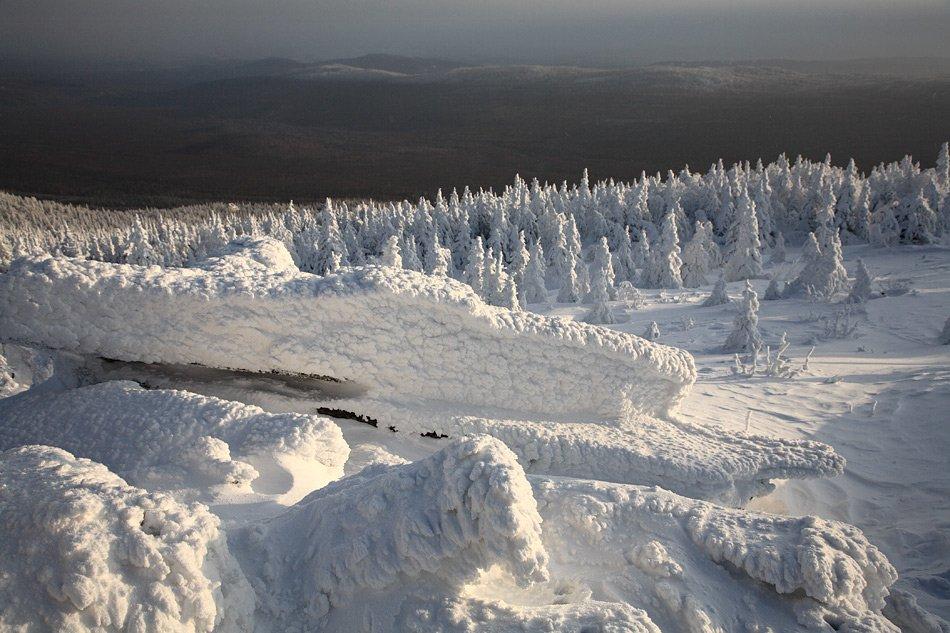 зима природа Россия