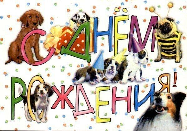 пикселов прикольные открытки на день рождения с собакой вацап фоновые рисунки