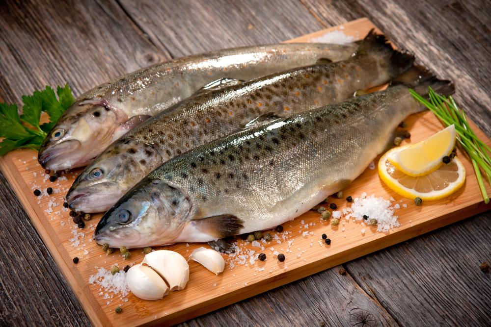 рыба для кормления кошки